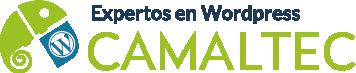 Logo Mediano Diseño web profesional
